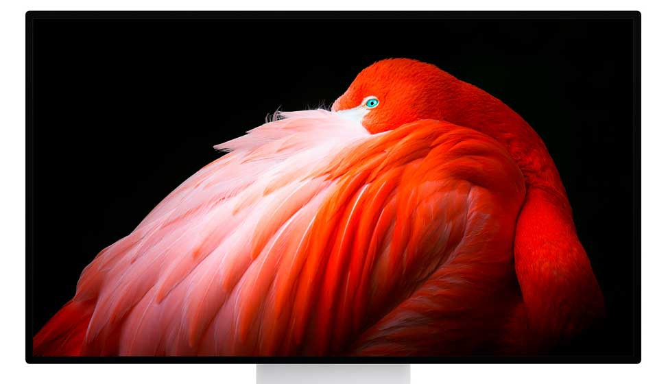 "Apple Pro Display XDR 32"" Retina 6K"